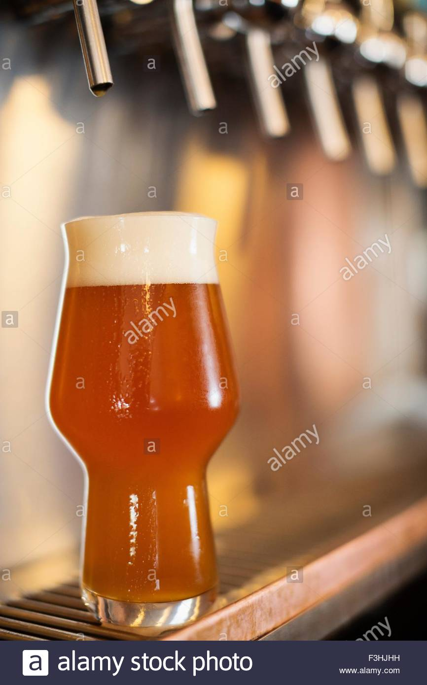Beer resting under beer taps - Stock Image