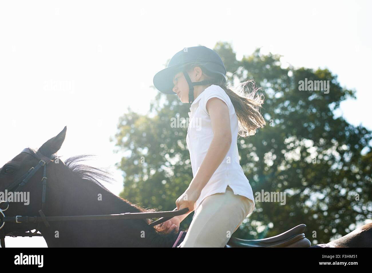 Cropped view of girl riding horse in countryside - Stock Image