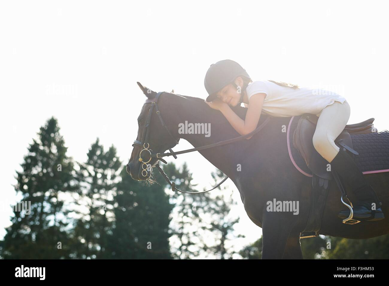 Girl on horseback leaning forward to pet horse - Stock Image