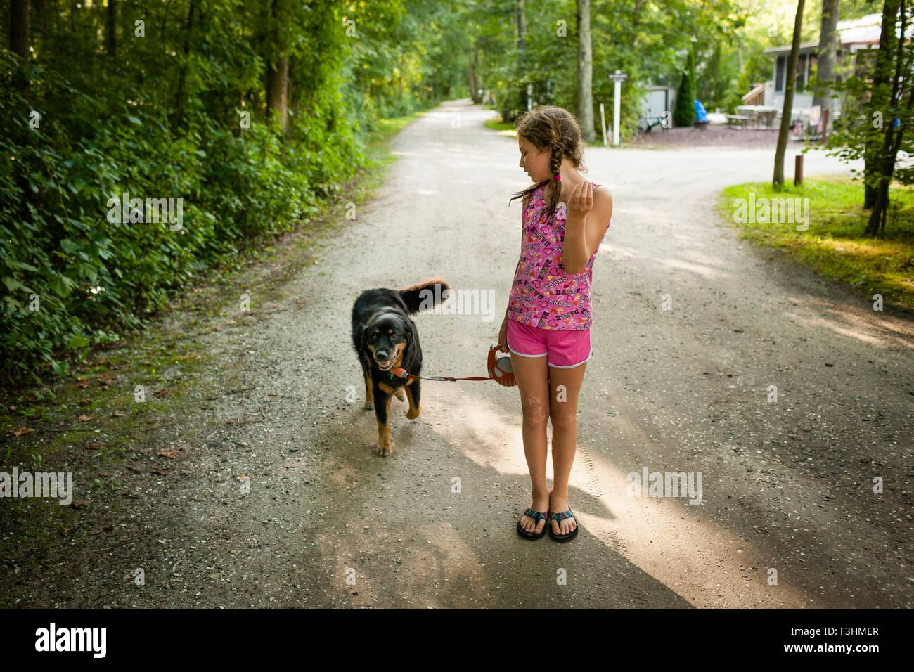 Front view of girl on dirt road, walking dog, looking over shoulder - Stock Image