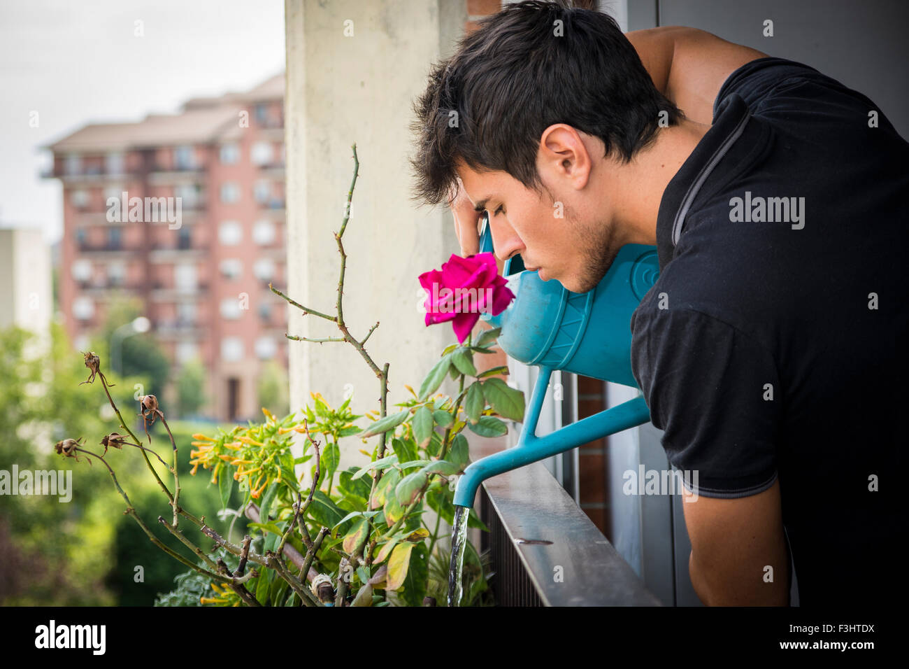Attractive Young Man on Apartment Balcony Watering Plants in Box from Blue Watering Can on Sunny Day with Field - Stock Image