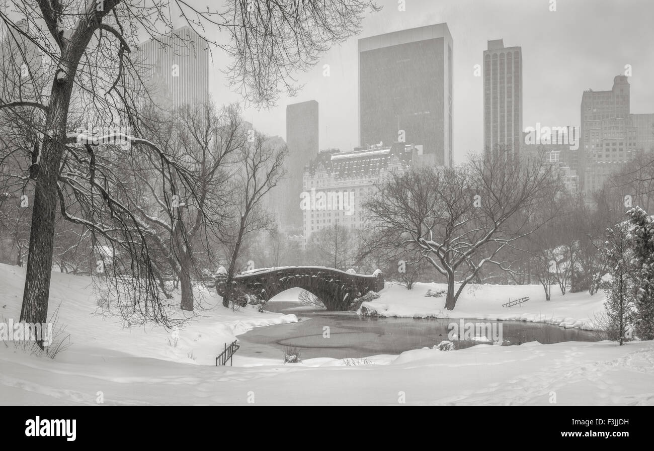Frozen Pond and heavy snowfall in Central Park. Gapstow Bridge and Manhattan high-rises and skyscrapers. Wintertime - Stock Image