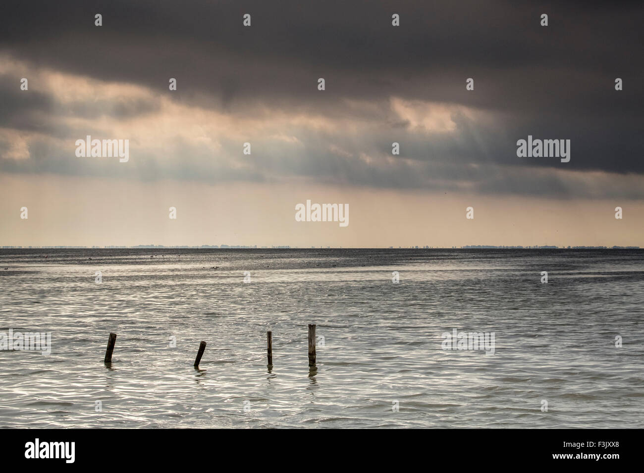 Camargue sunrays and posts - Stock Image