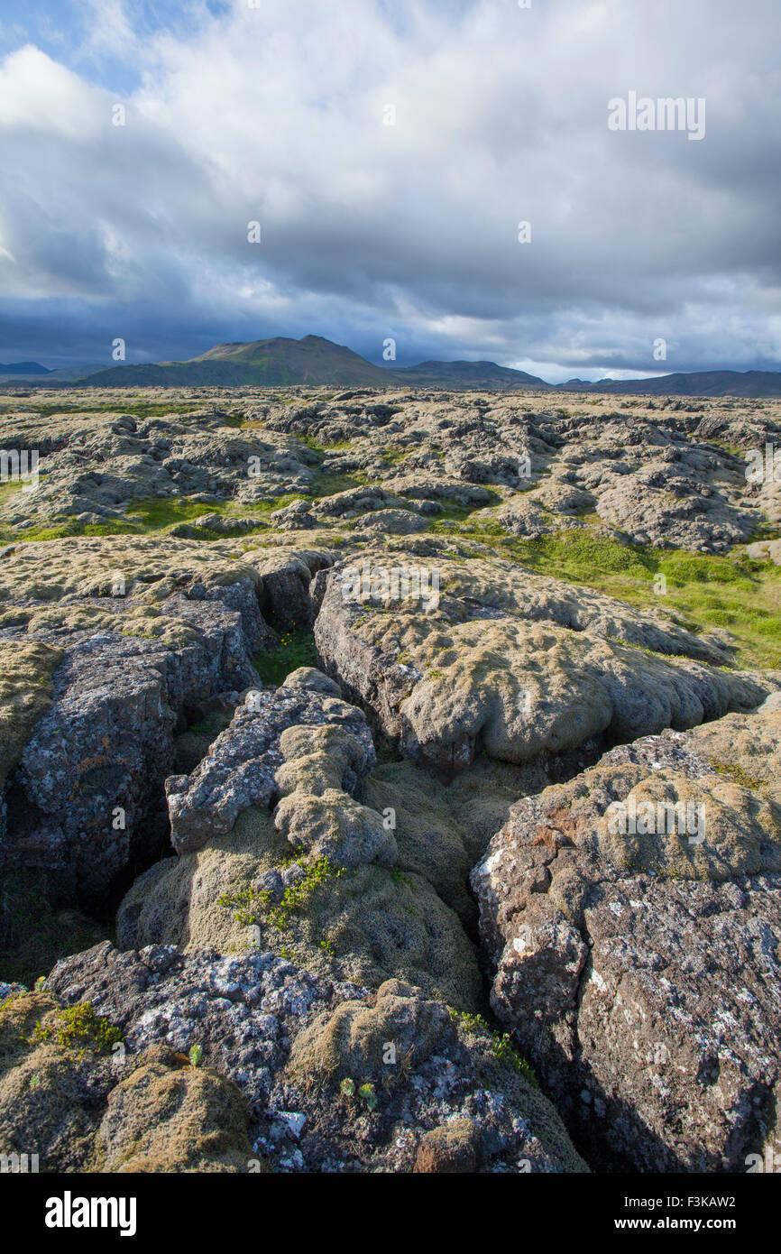 Moss-covered lava field near Hveragerdi, Sudherland, Iceland. - Stock Image