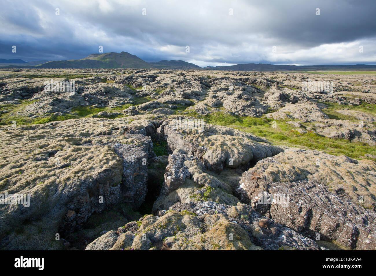 Moss-covered lava field near Hveragerdi, Sudherland, Iceland. Stock Photo