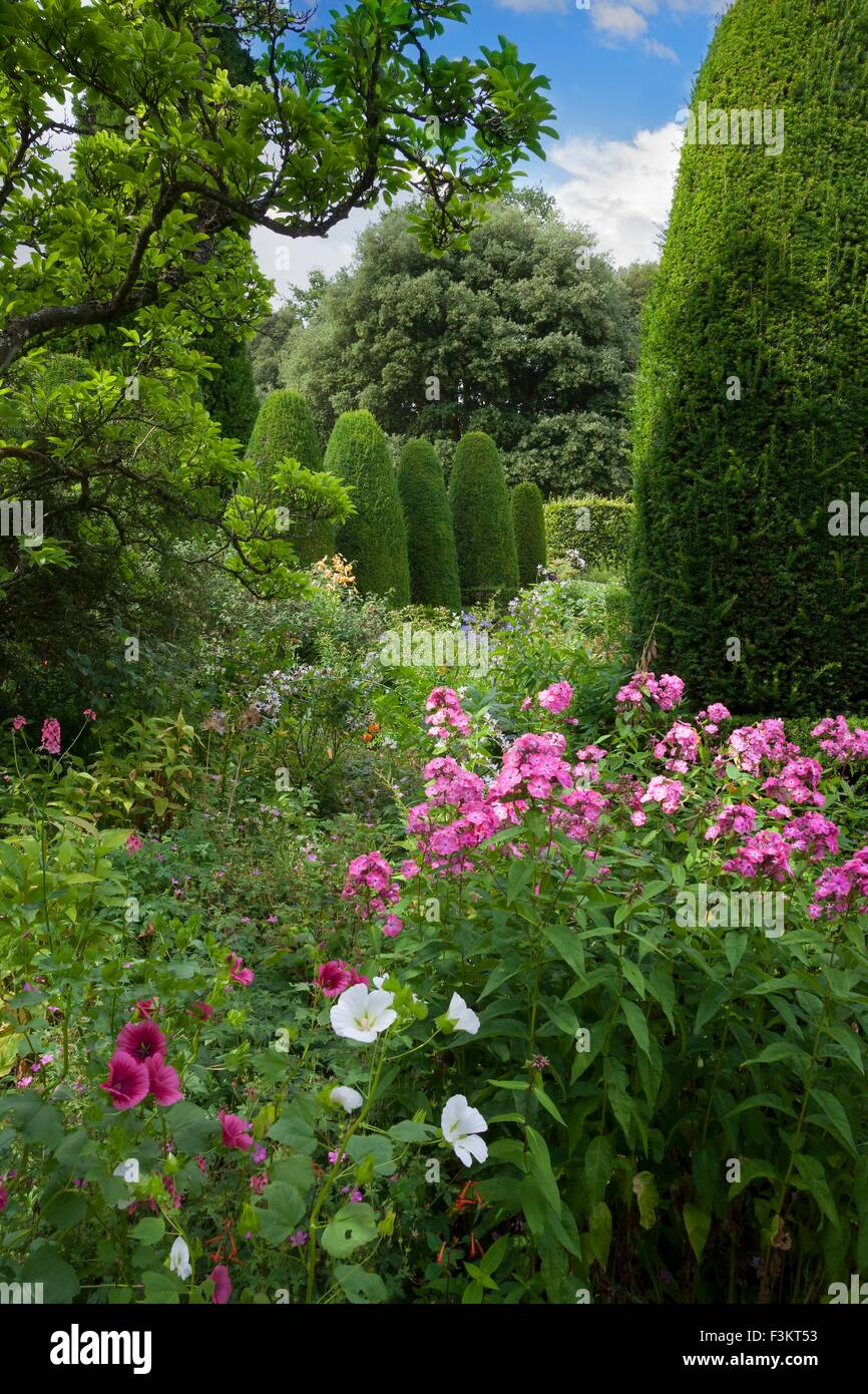 Pretty flower beds and clipped Yew trees, England. - Stock Image