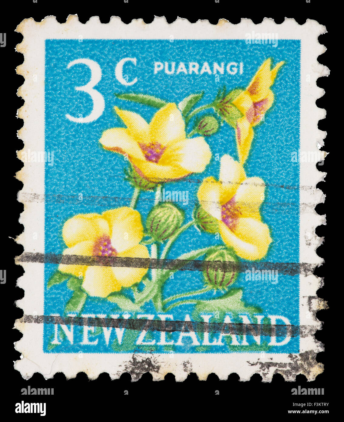 NEW ZEALAND - CIRCA 1967: A postage stamp printed in New Zealand shows a Puarangi flower, Hibiscus richardsonii, Stock Photo