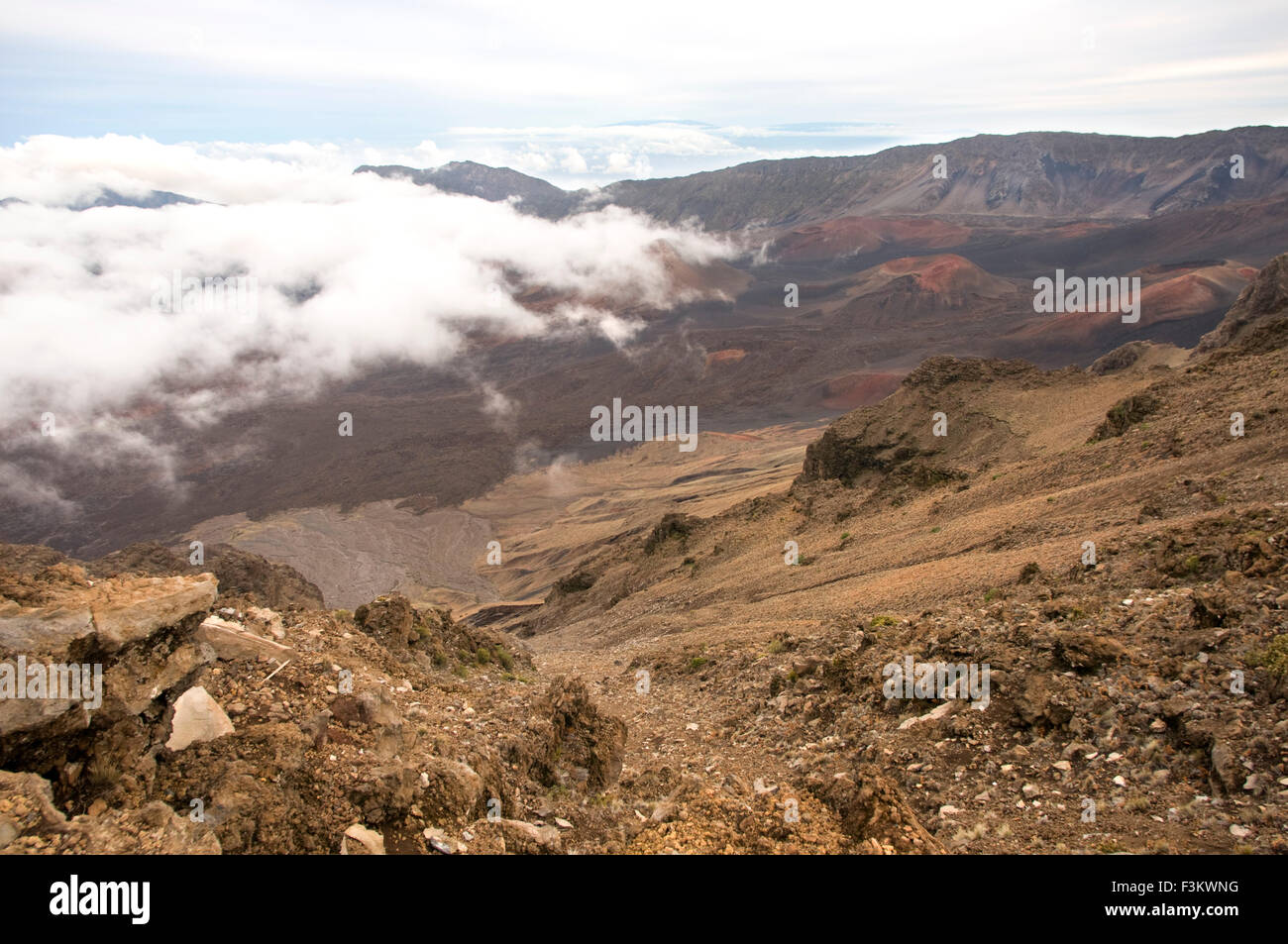 Cinder cones in the Haleakala National Park. Views from the viewpoint of Leleiwi. Maui. Hawaii. The Haleakala National - Stock Image