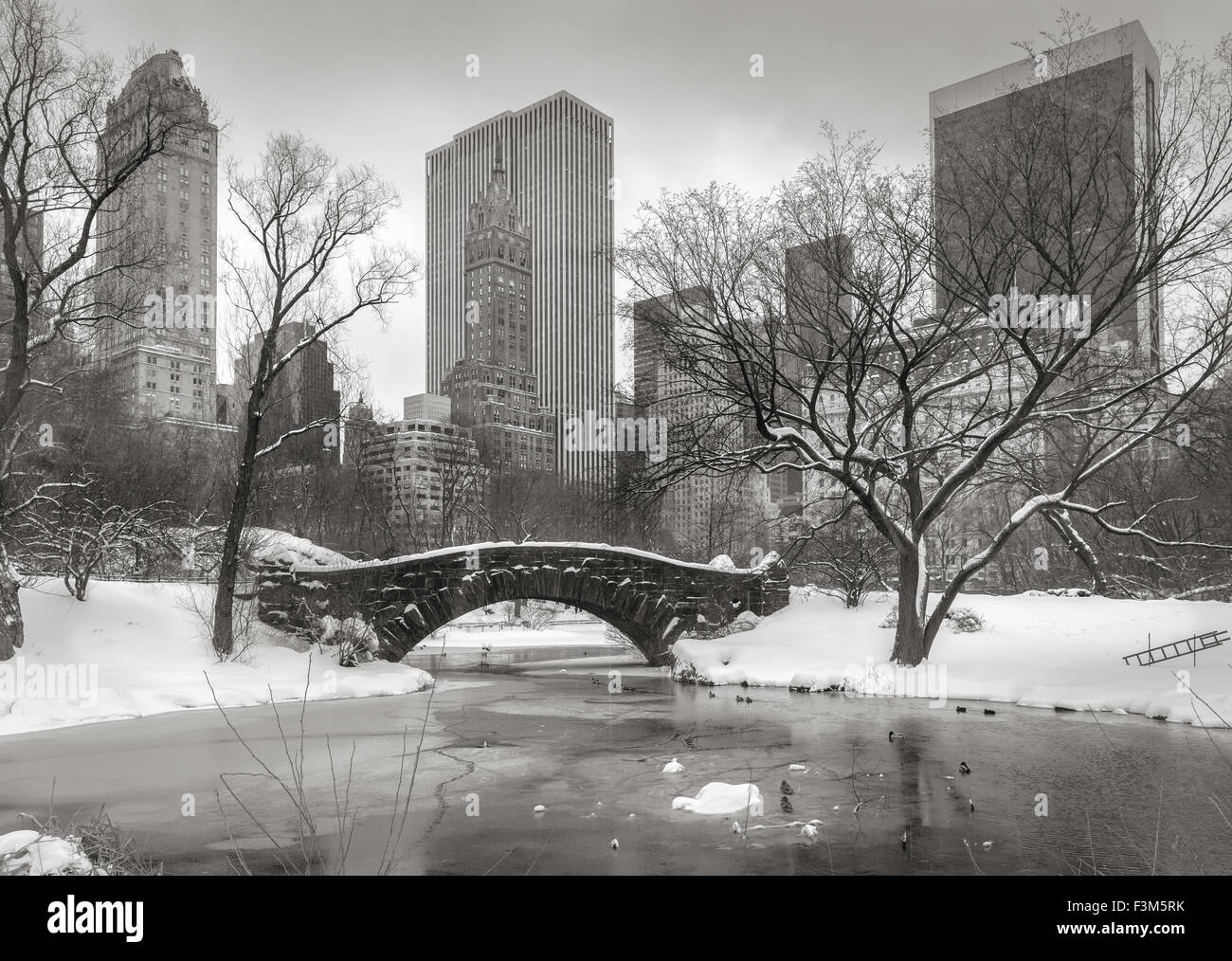 Central Park after a snowstorm with the Pond frozen, and Gapstow Bridge covered with snow. Manhattan skyscrapers - Stock Image
