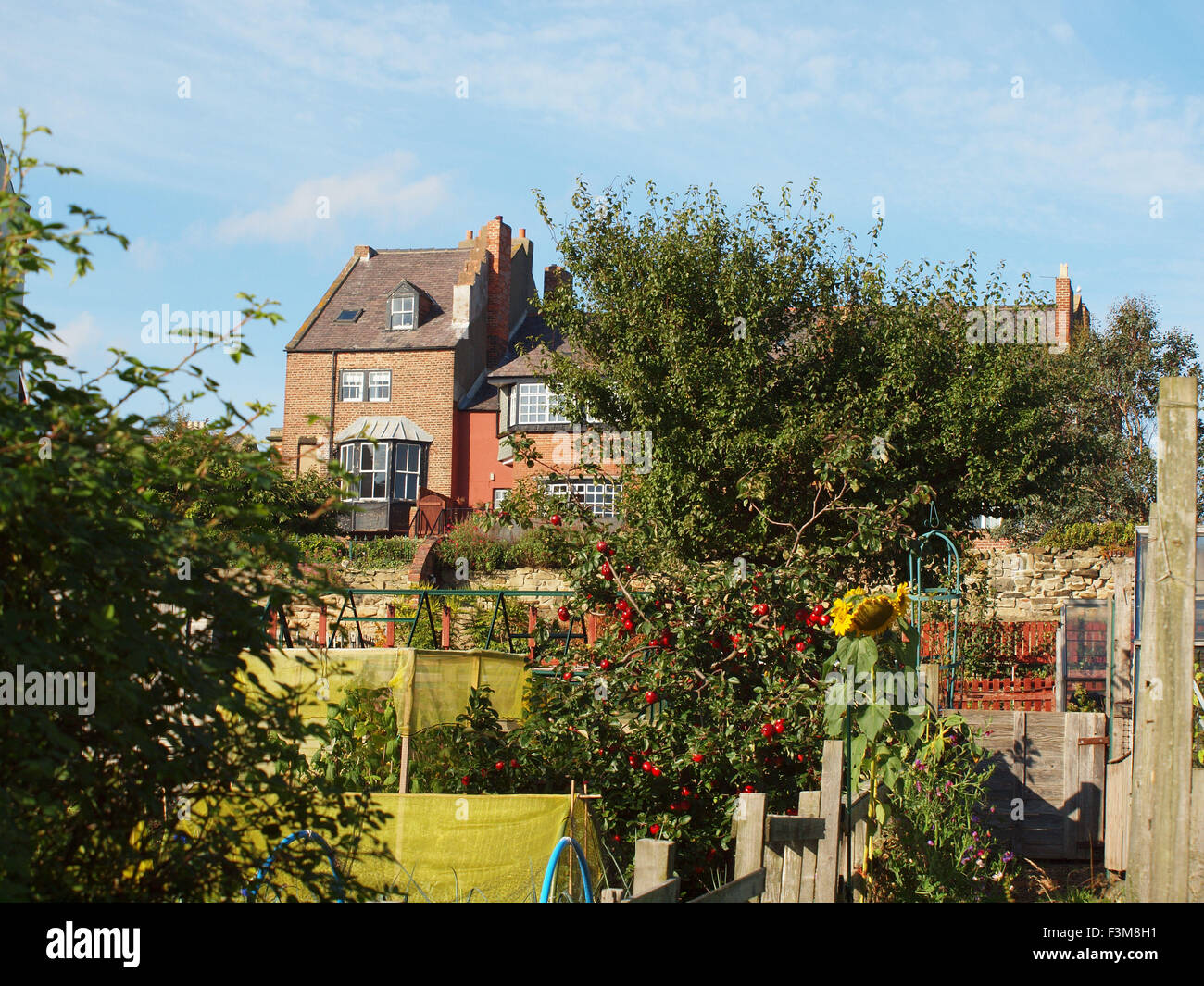 Newcastle Upon Tyne, UK. 9th October 2015. UK Weather: Automnal landscape of dwellings and gardens bathe in the - Stock Image