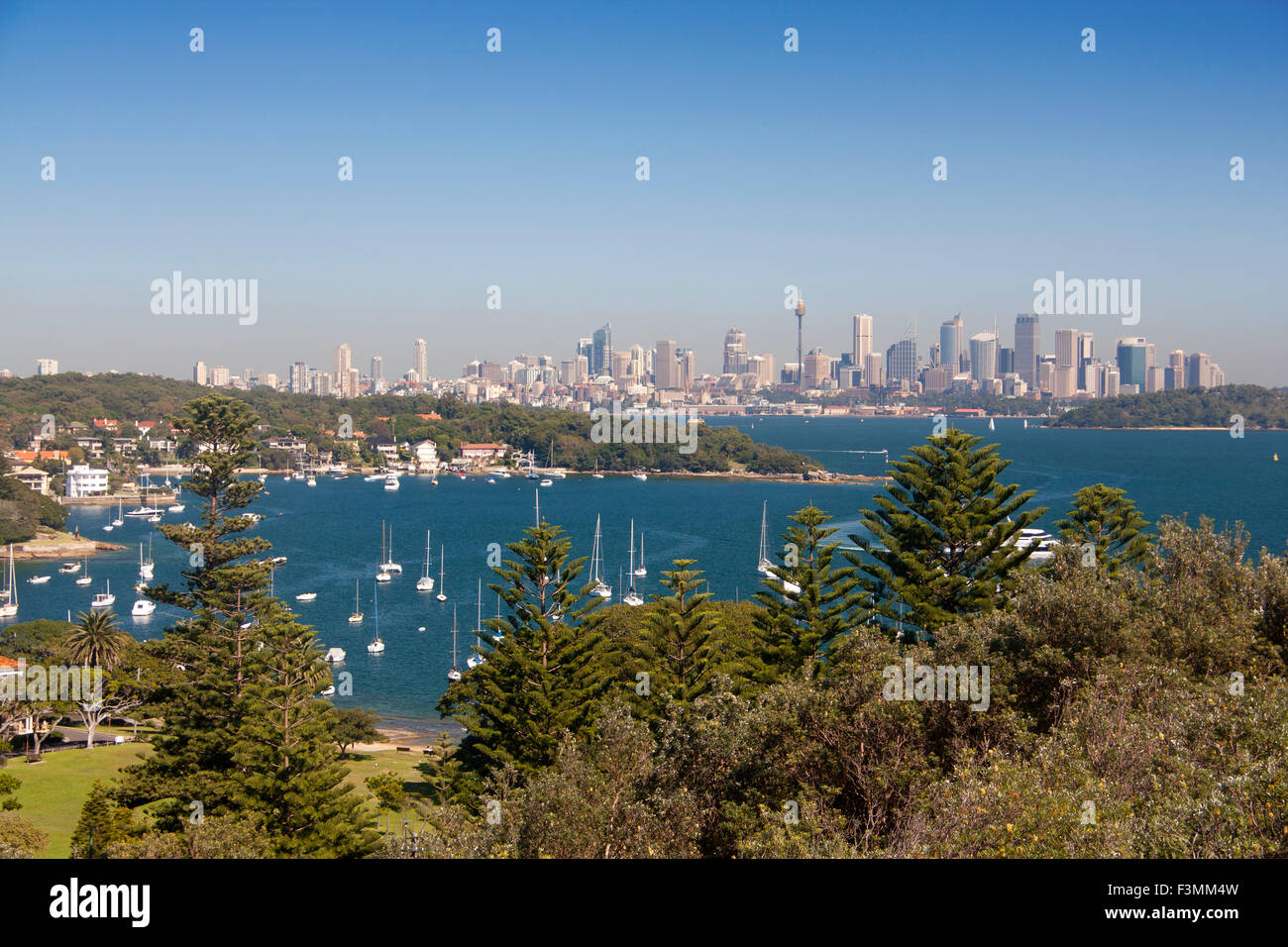 Watsons Bay view to city CBD skyscrapers skyline Eastern Suburbs Sydney New South Wales NSW Australia - Stock Image