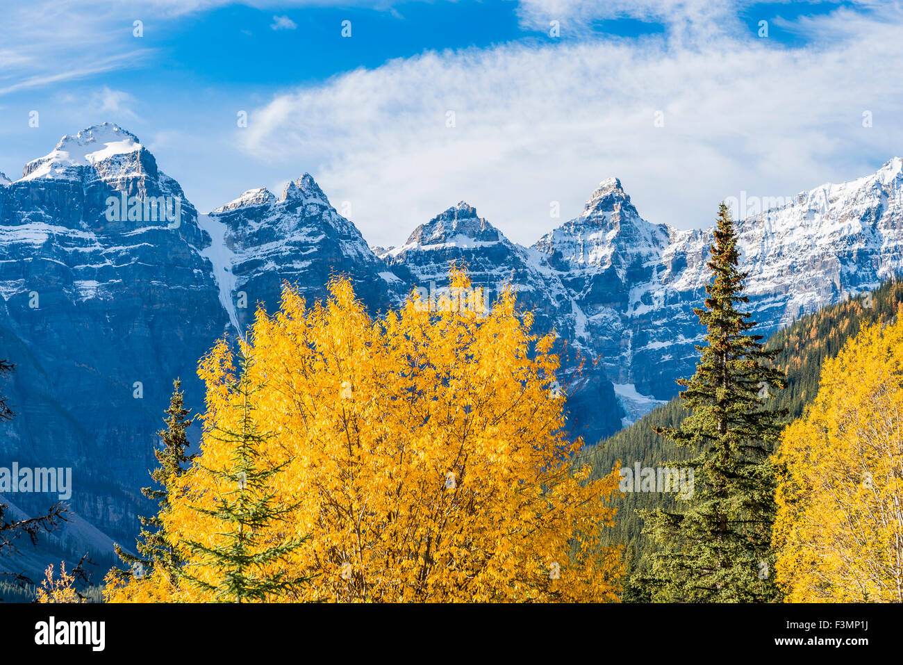 Fall colour, Valley of the Ten Peaks,, Banff National Park, Alberta, Canada, - Stock Image