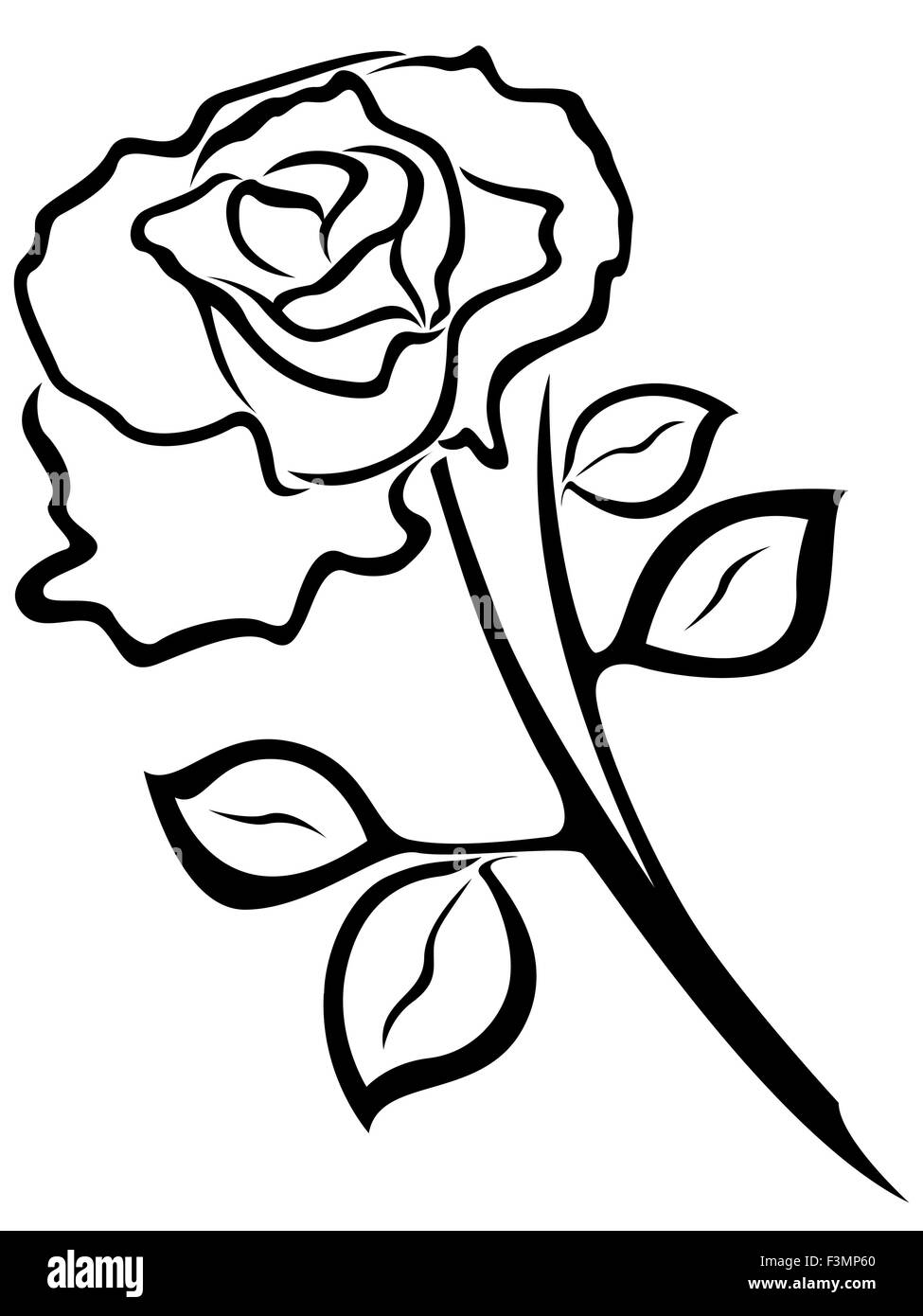 Rose Stem Vector Black And White Stock Photos Images Alamy Flower Line Diagram Simple Drawing Of Bud Outline Isolated On A Background Image
