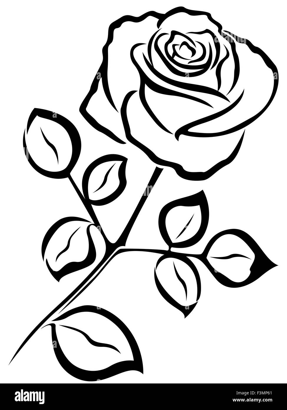 Black Vector Outline Of Single Rose Flower Isolated On A White Stock