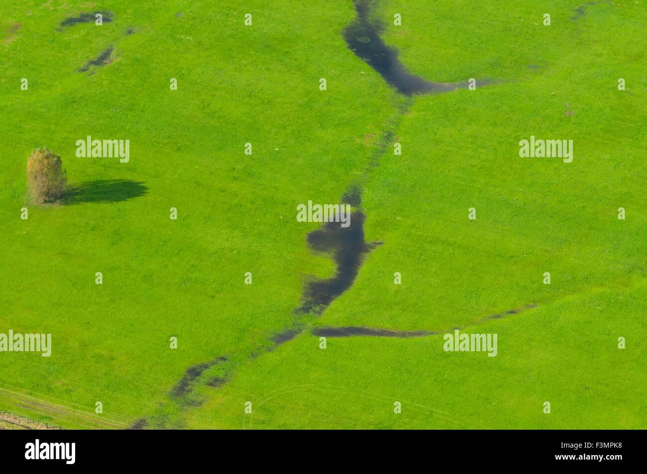 France, Bas Rhin (67), Gambsheim, green meadow flooded   (aerial view)  // Bas Rhin (67), Gambsheim, pairie inondee - Stock Image