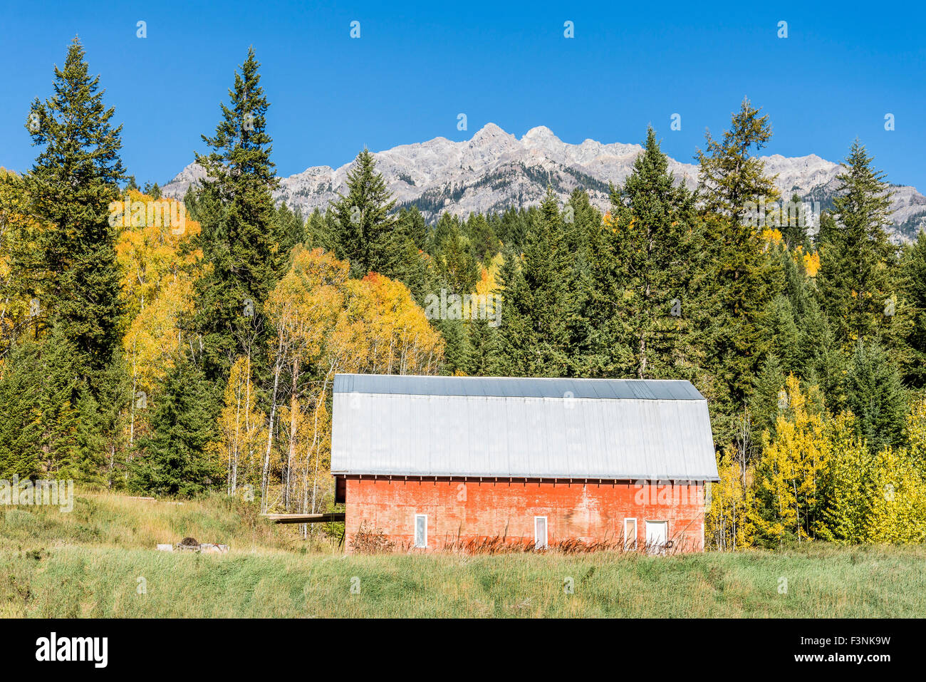 Red barn, Columbia Valley, British Columbia, Canada - Stock Image