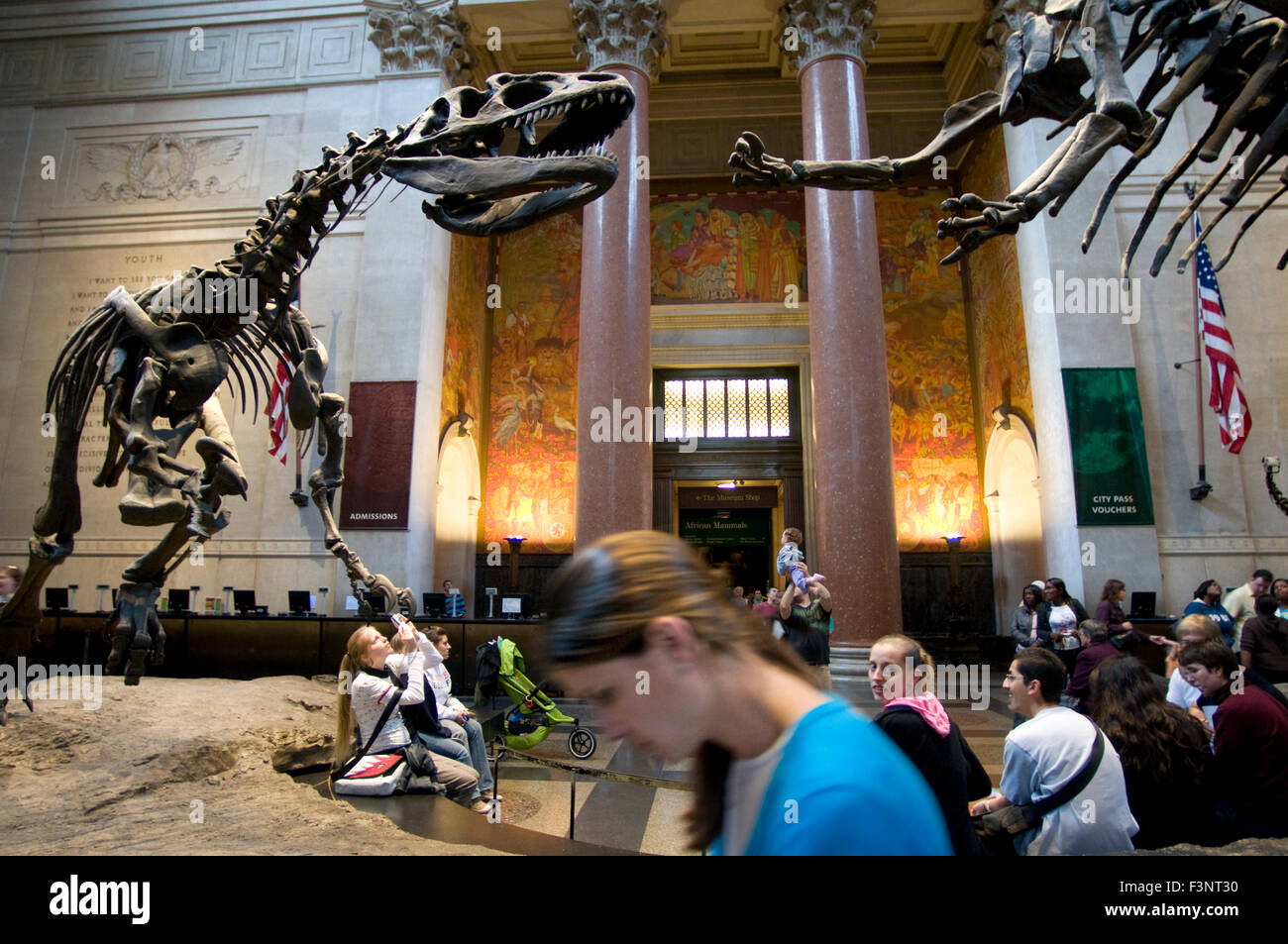 American Museum of Natural History. Central Park West to 79th Street. Tel 212-769-5100. (Mon-Sun 10am-5: 45pm / - Stock Image