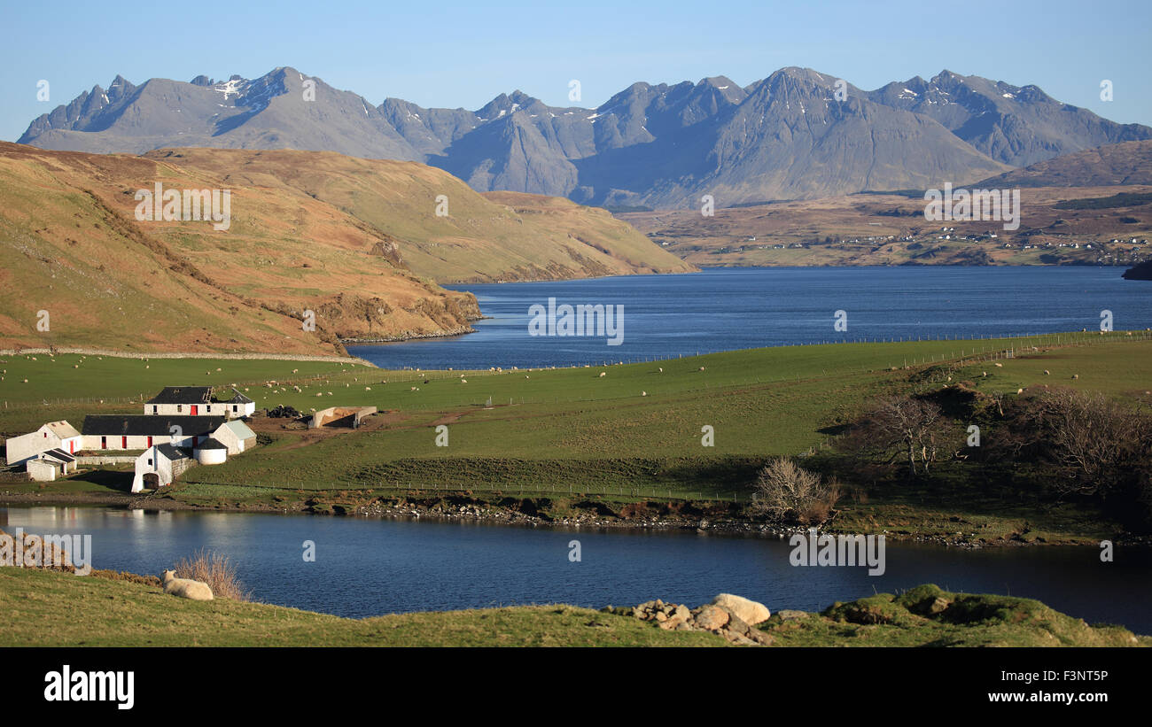 Gesto Farm with Loch Harport between the farm and the Cuillin Mountains, Isle of Skye, inner Hebrides, Scotland Stock Photo