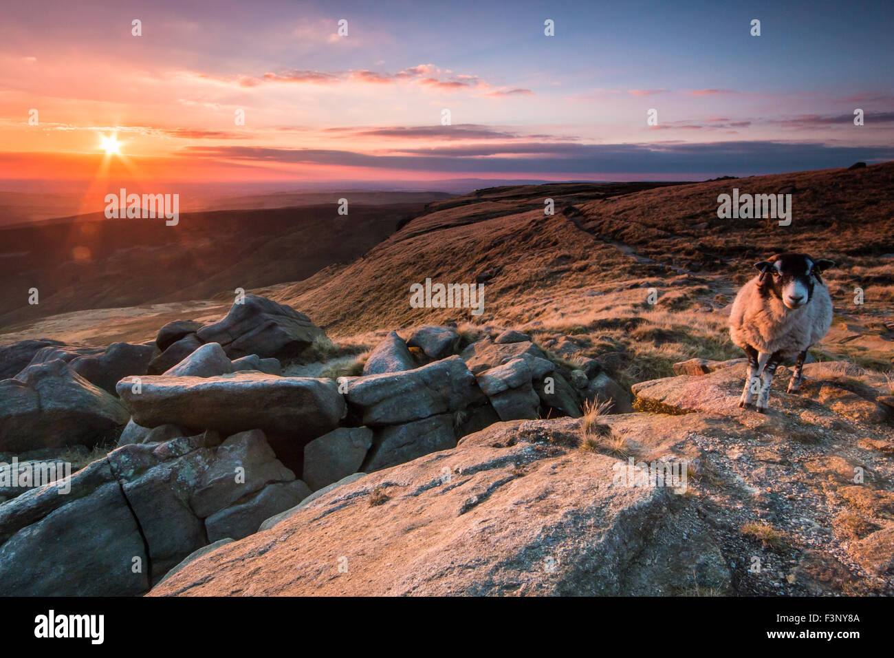 View of the sunset and sheet from the Pennine Way on Kinder Scout, the highest point in the Peak District, England. - Stock Image