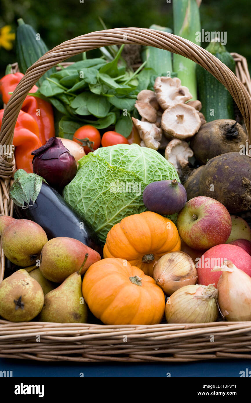 Harvest basket containing a selection of UK grown fruit and vegetables. - Stock Image