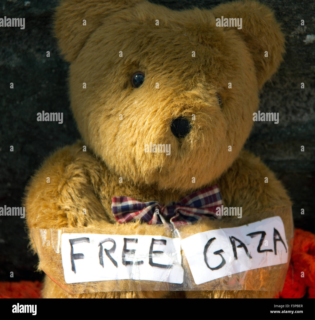 Free Gaza teddy bear - Stock Image