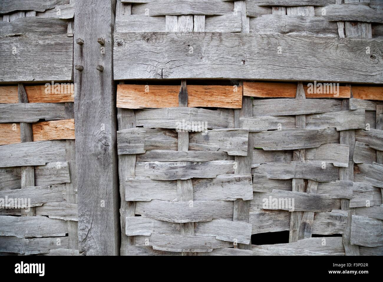Wattle and timber-framed building panel, England. - Stock Image