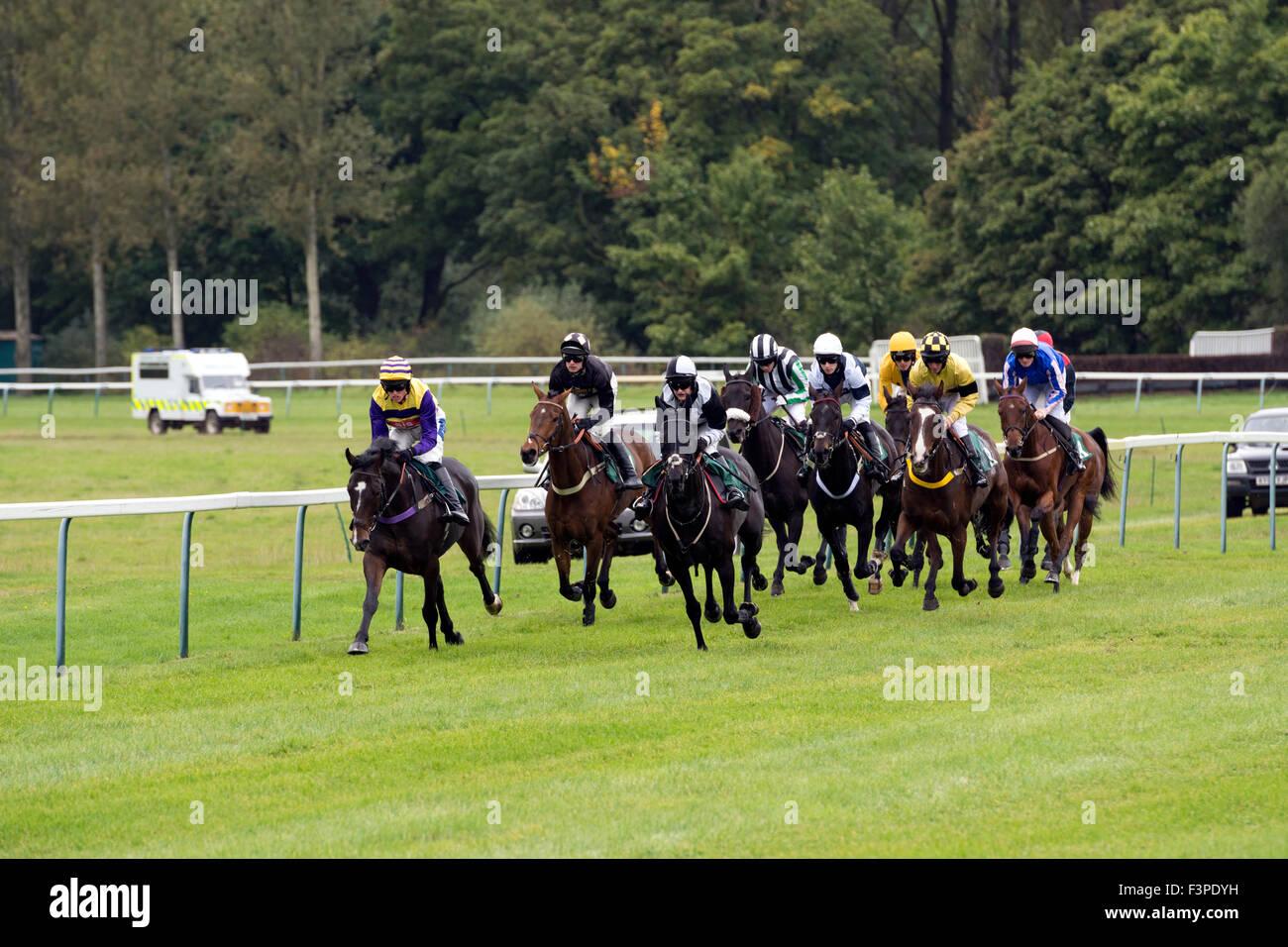 Horses racing at Towcester Races, Northamptonshire, England, UK - Stock Image