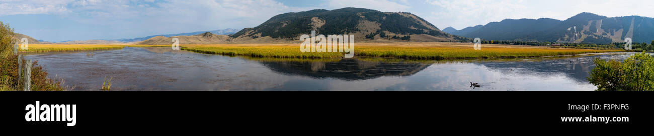 Wide panorama view of National Elk Refuge; Jackson, Wyoming; USA - Stock Image