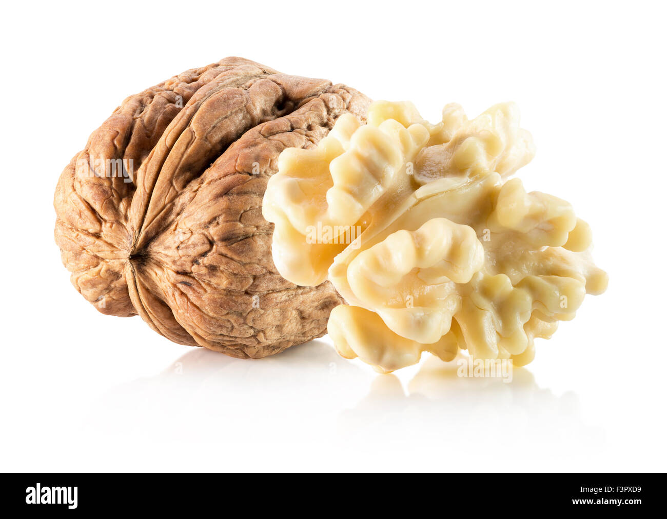 walnut with nucleus isolated on the white background. - Stock Image