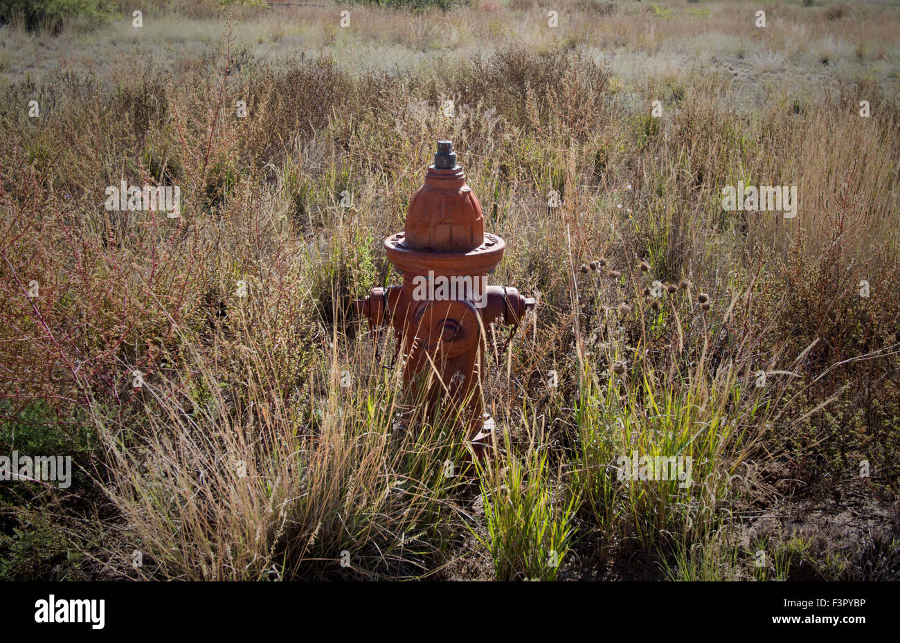Fire hydrant in neglected environment in West Texas - Stock Image