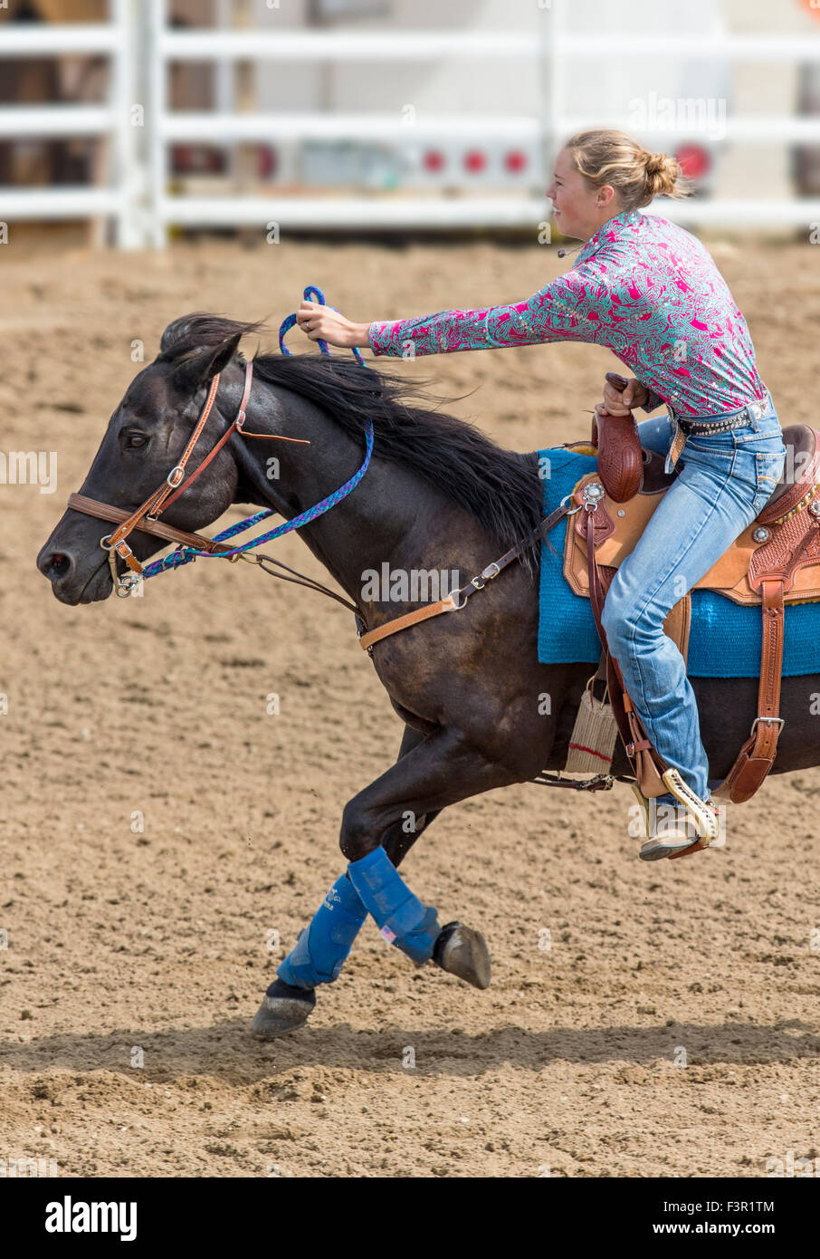Rodeo cowgirl on horseback competing in barrel racing event, Chaffee County Fair & Rodeo, Salida, Colorado, - Stock Image