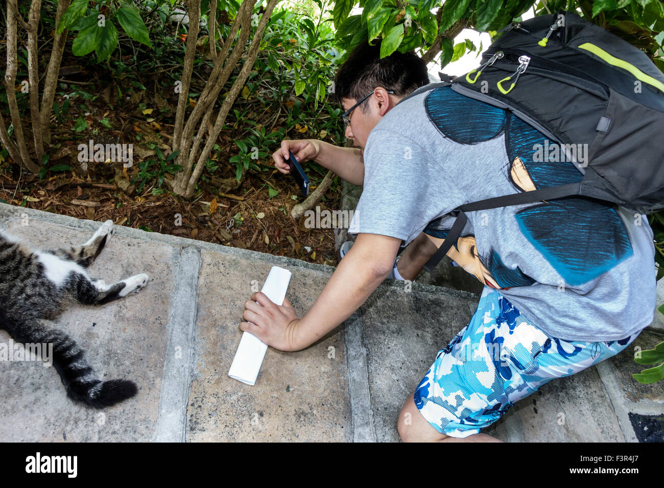 Florida Key West Keys Whitehead Street The Ernest Hemingway Home and Museum Asian man smartphone picture six 6-toed Stock Photo
