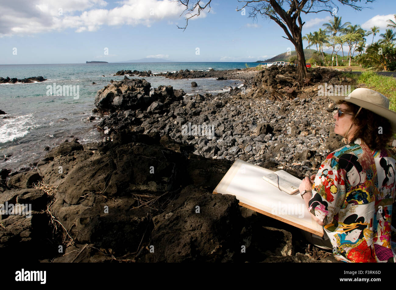 Woman painter with canvas in Perouse Bay. Maui. Hawaii. Haleakala's last display can be seen on Mau'i's southeast Stock Photo