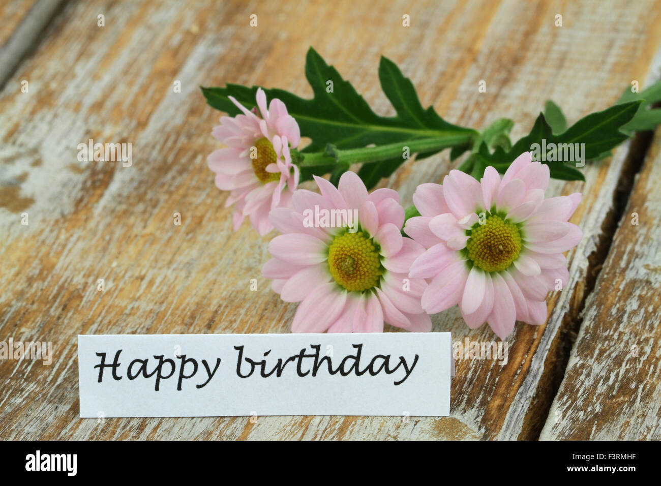 Happy Birthday Card With Pink Daisies On Rustic Wooden Surface