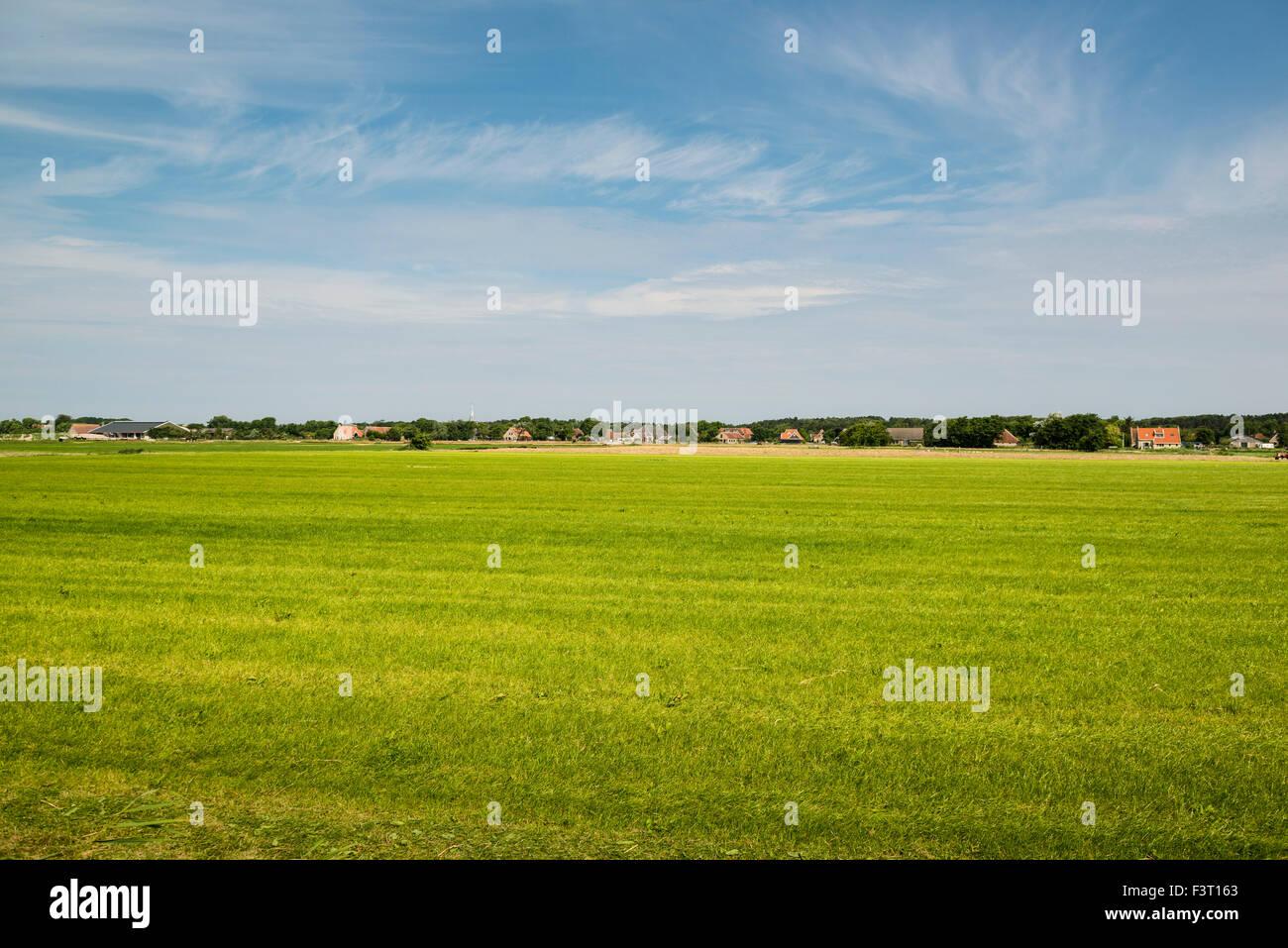 3 July, 2014  In de polder ten zuiden van Hoorn.  At reclaimed land south of the village of Hoorn.      Photo Kees - Stock Image