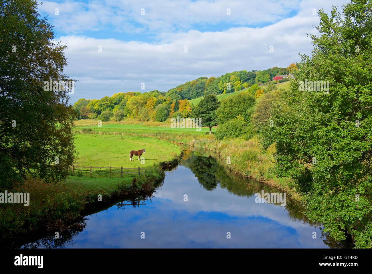 River Calder, Calderdale, West Yorkshire, England UK - Stock Image