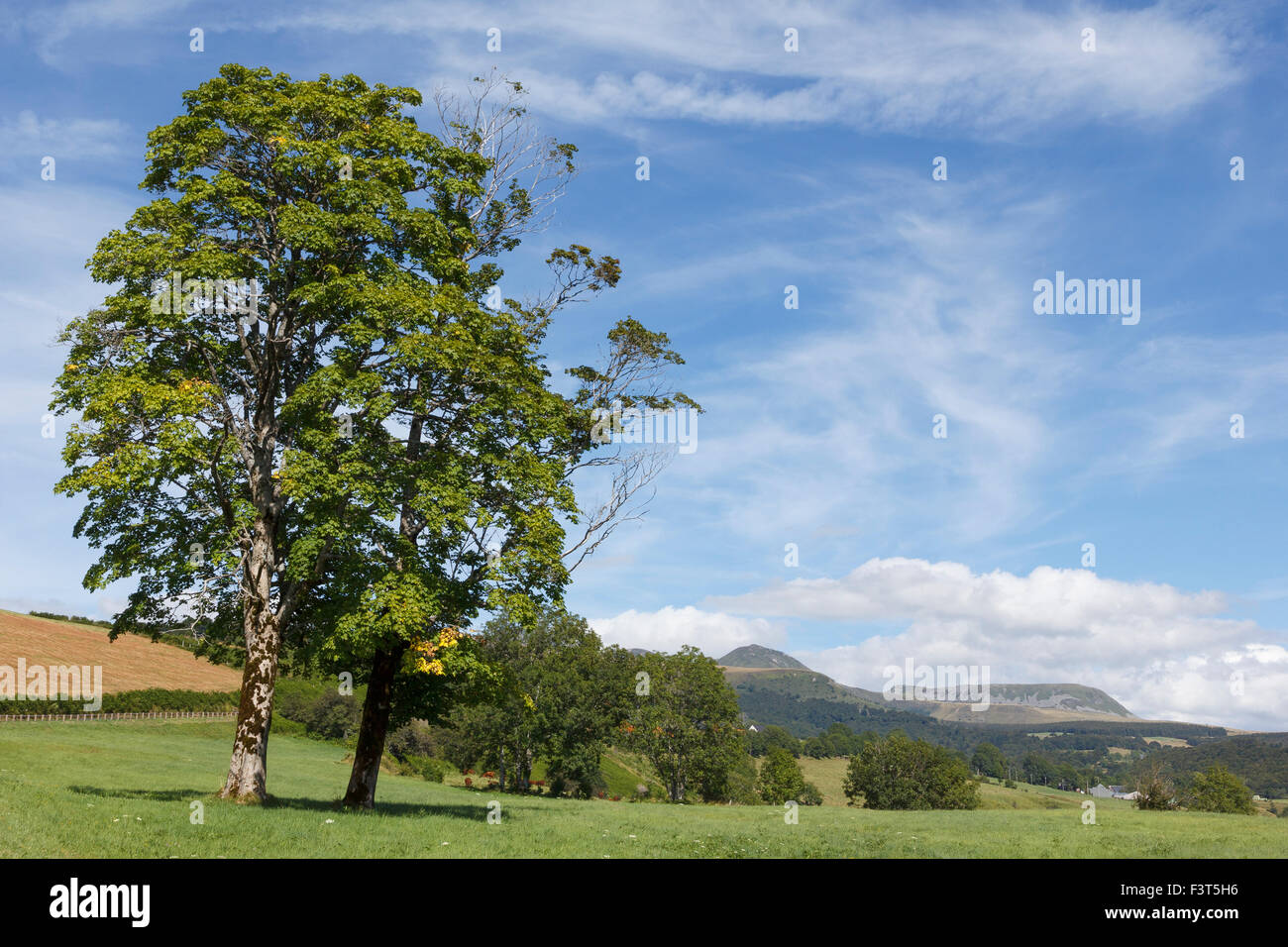 View to the mountain of Puy de Sancy from the village of Chastreix in the Auvergne, France - Stock Image