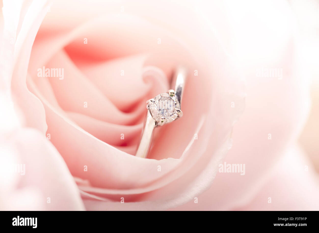 Floral Background Diamond Jewel Stock Photos & Floral Background ...