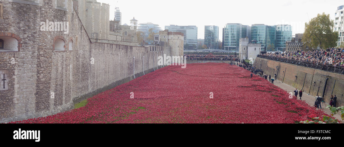 Remembrance celebrations 2014. 'Blood swept sees and land of red', was an art installation by Paul Cummins,The - Stock Image