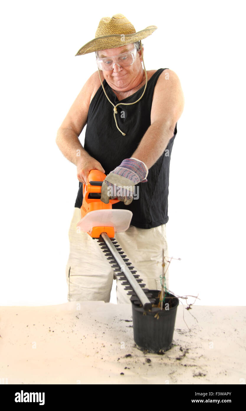 Gardener With Hedge Trimmer - Stock Image