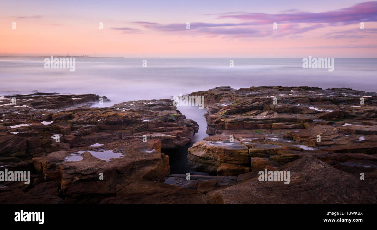 Coastal rocks at Seaton Sluice - Stock Image