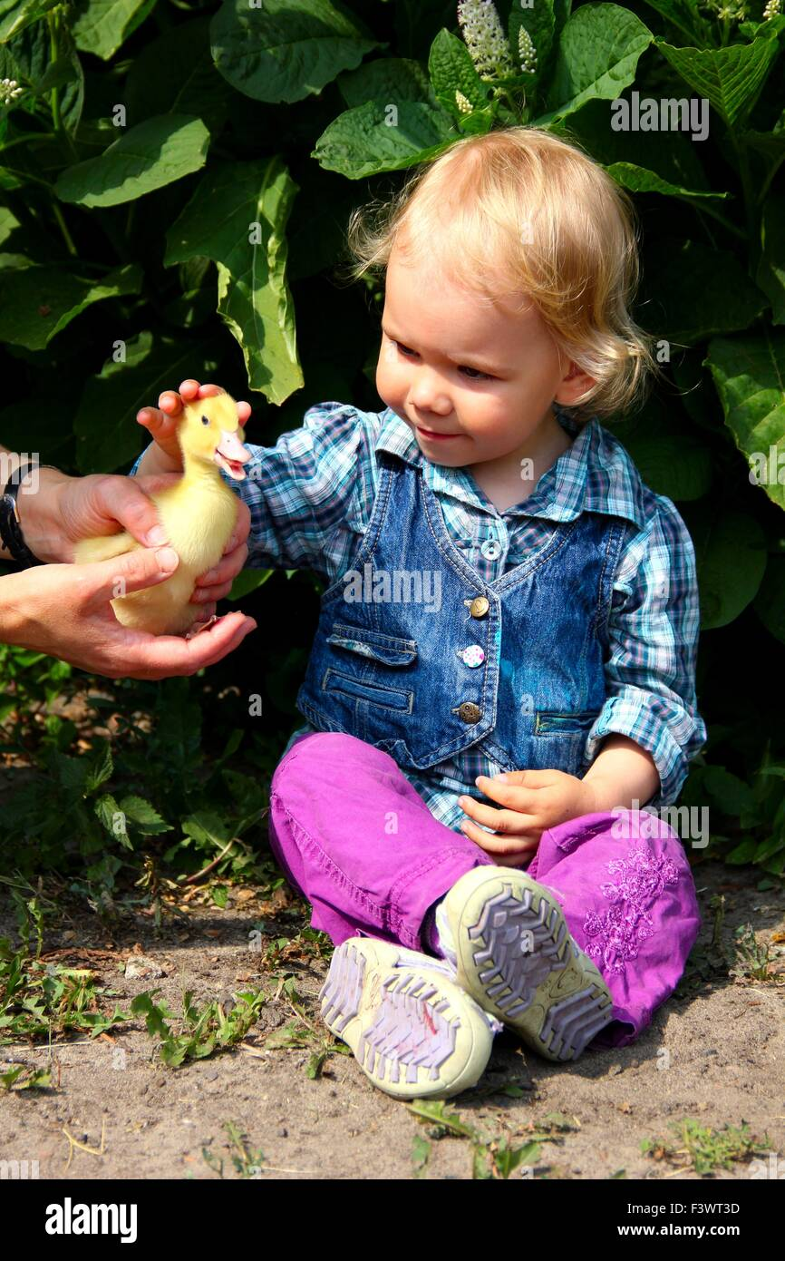 little girl with duck Stock Photo