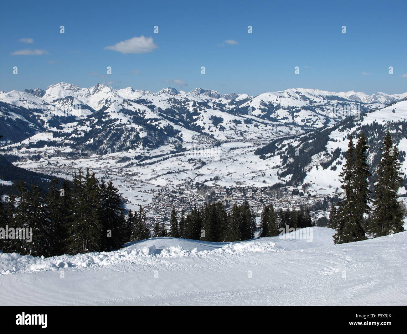 Winter image of Gstaad, spruces - Stock Image