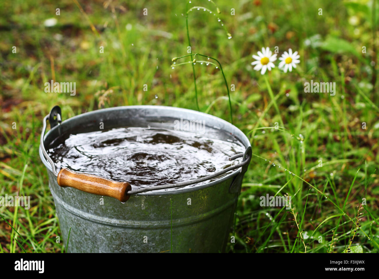 Summer rain - Stock Image