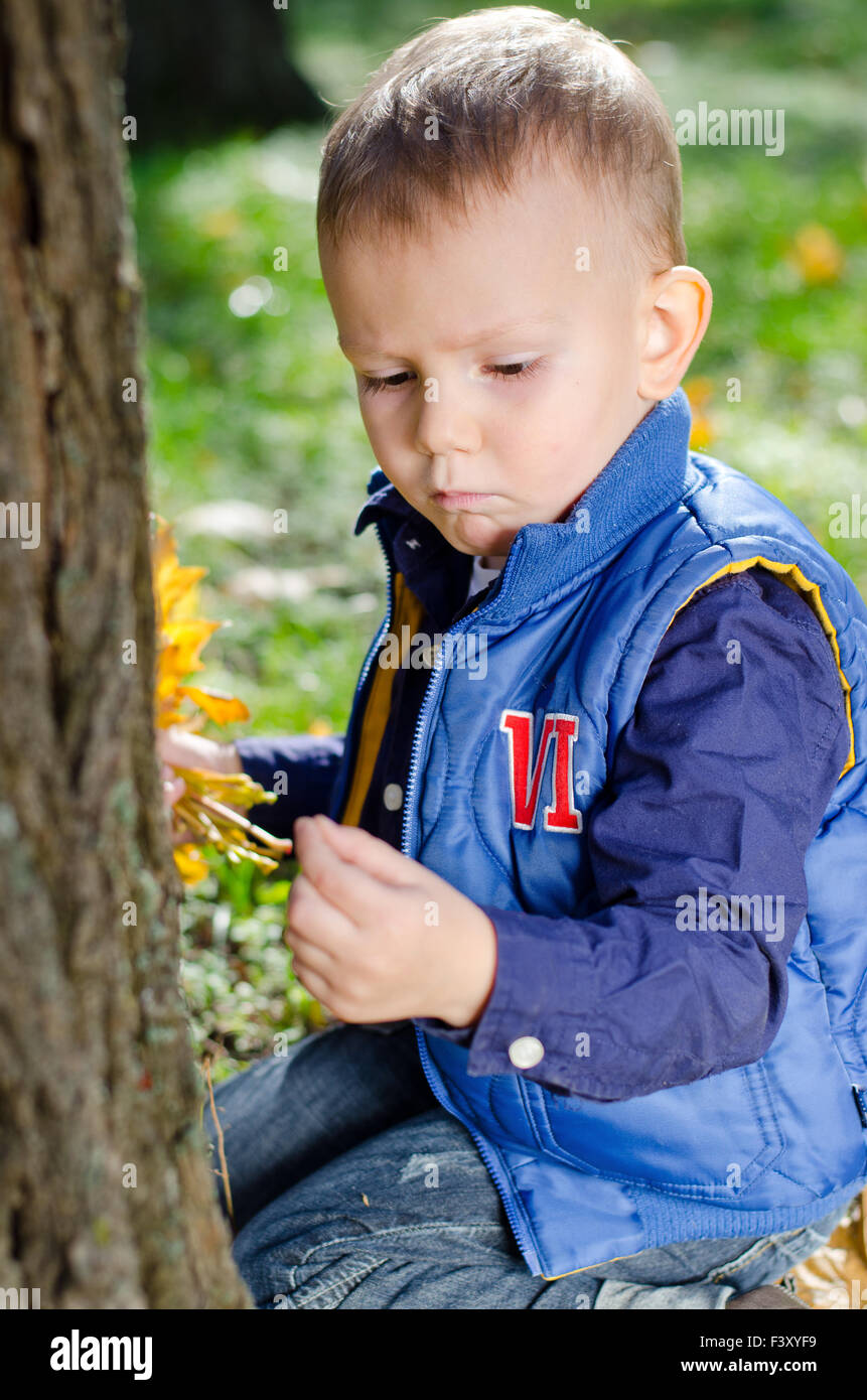 Engrossed little boy looking at an insect - Stock Image
