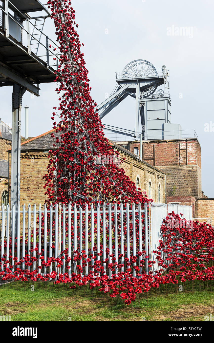 Weeping Window of ceramic poppies on display at Woodhorn museum in Northumberland. - Stock Image
