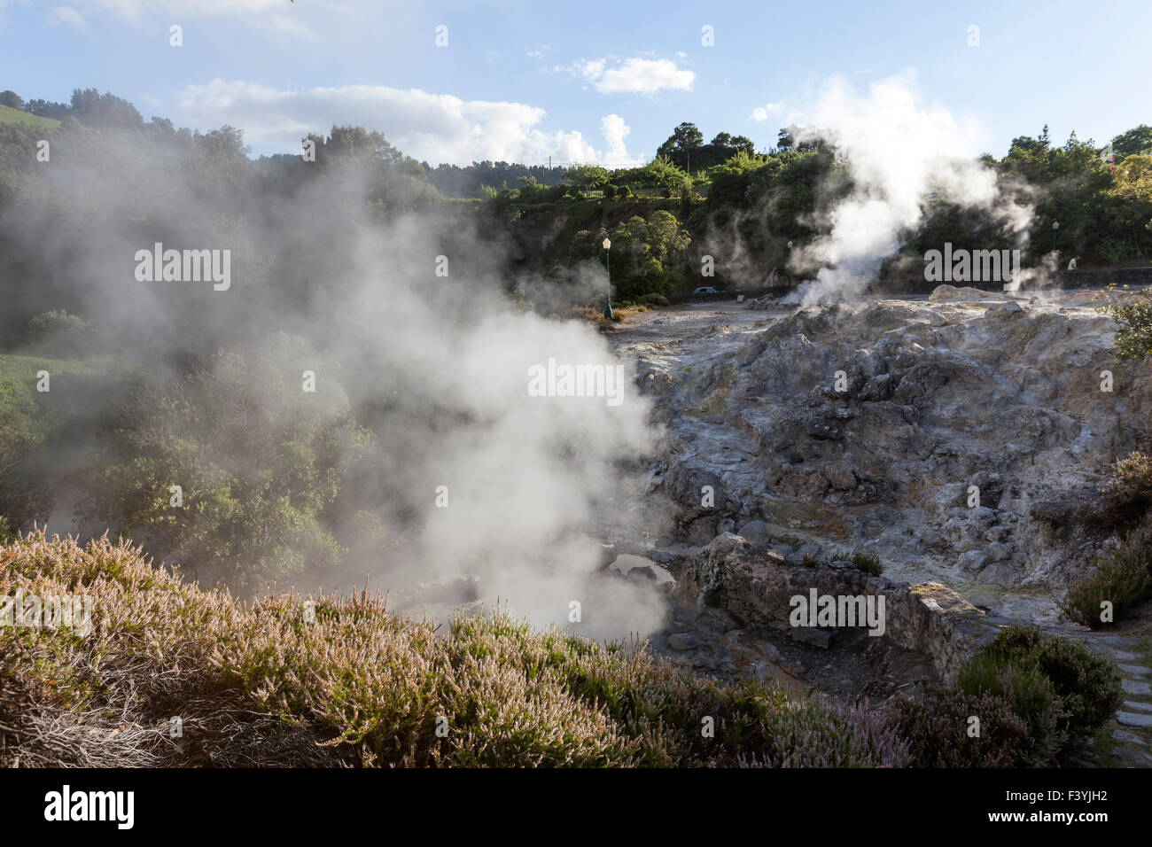 One of the many geysers, hot-springs and fumaroles scattered in the central village of Furnas, São Miguel, - Stock Image