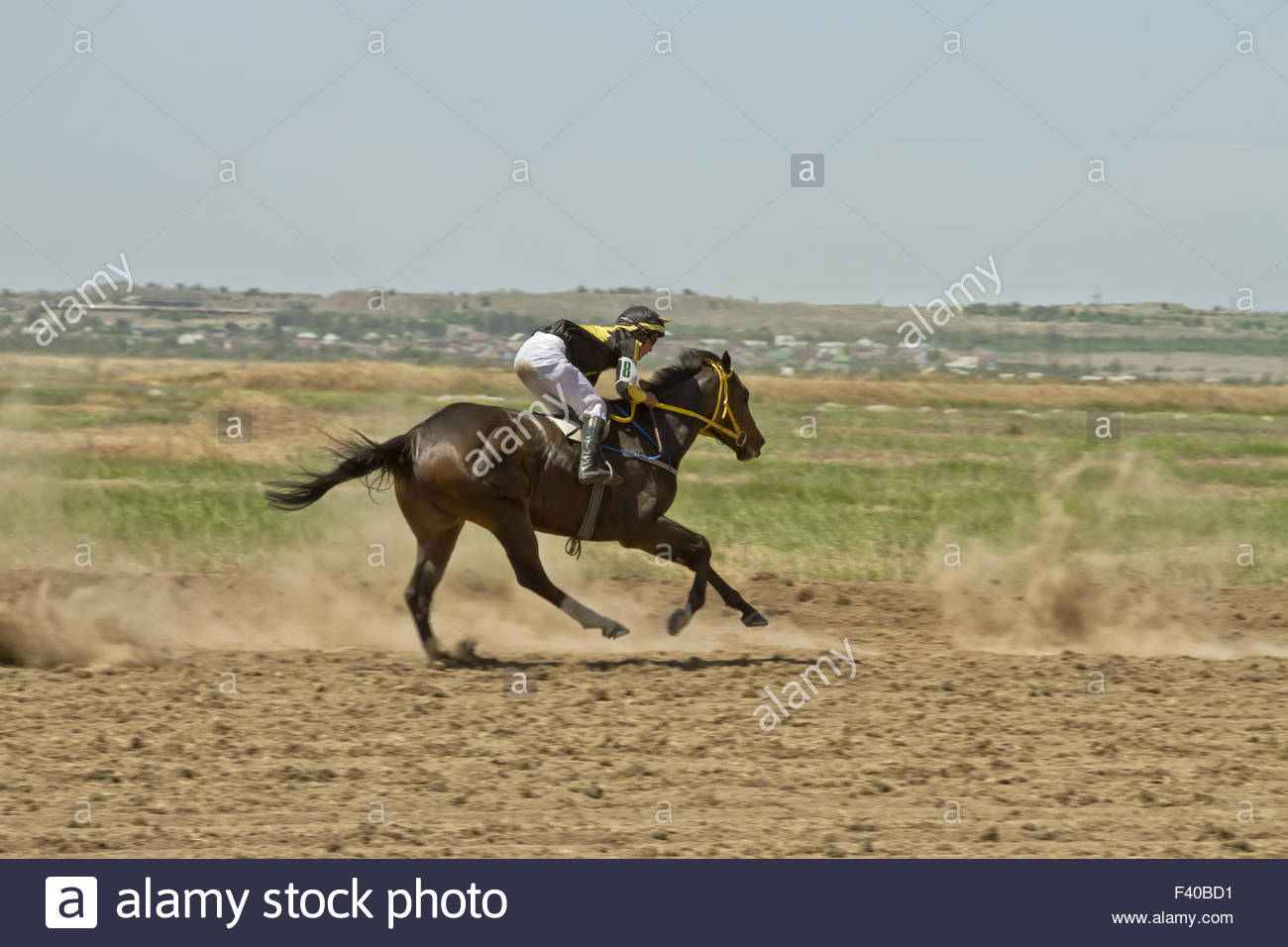 Jockey riding a horse during horse racese - Stock Image