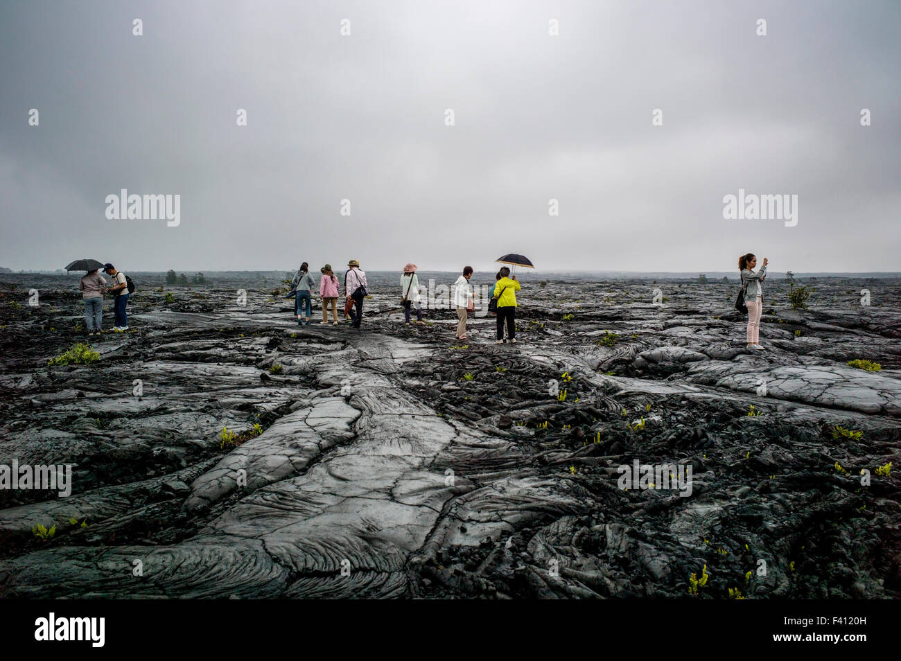 Japanese tourists visit a barren rainy landscape of lava rock fields, Hawai'i Volcanoes National Park, Big Island, - Stock Image