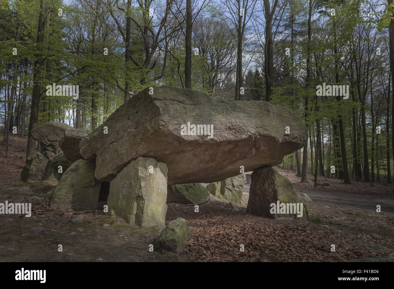 Neolithic grave, Megalithic stones in Germany Stock Photo
